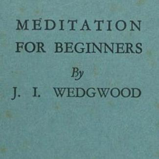 Meditation for Beginners bu J I Wedgewood